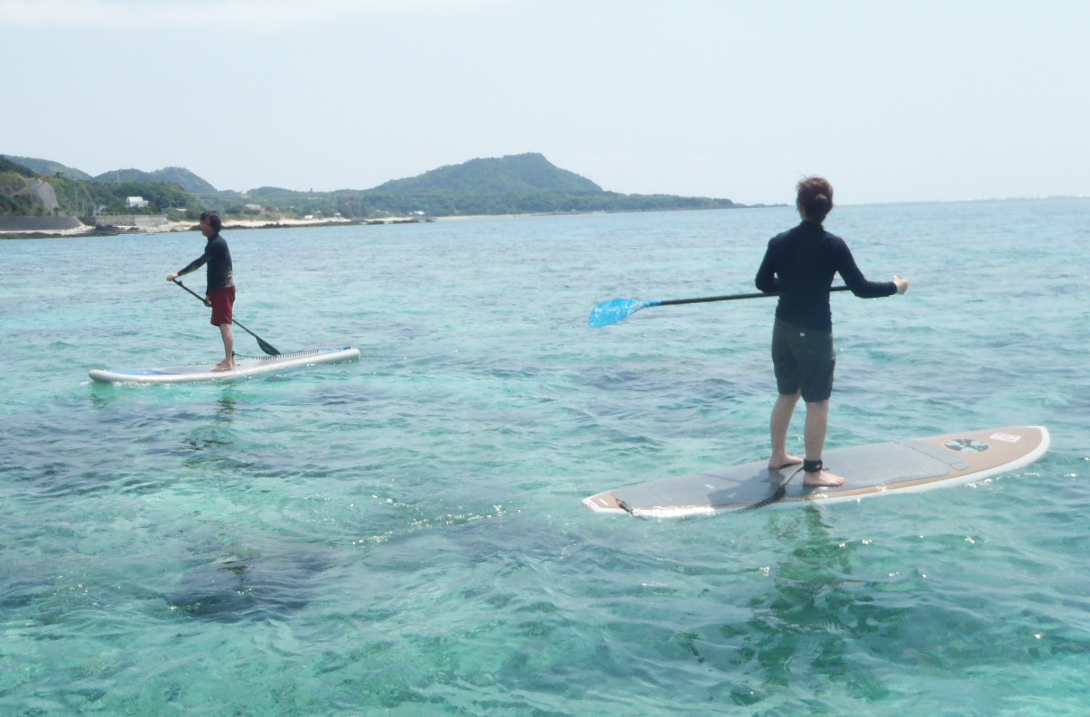 Try Stand Up Paddle